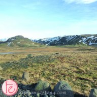 Iceland Travel moss land- South